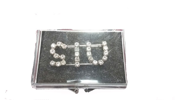 Image for the SIU RHINESTONE PIN product