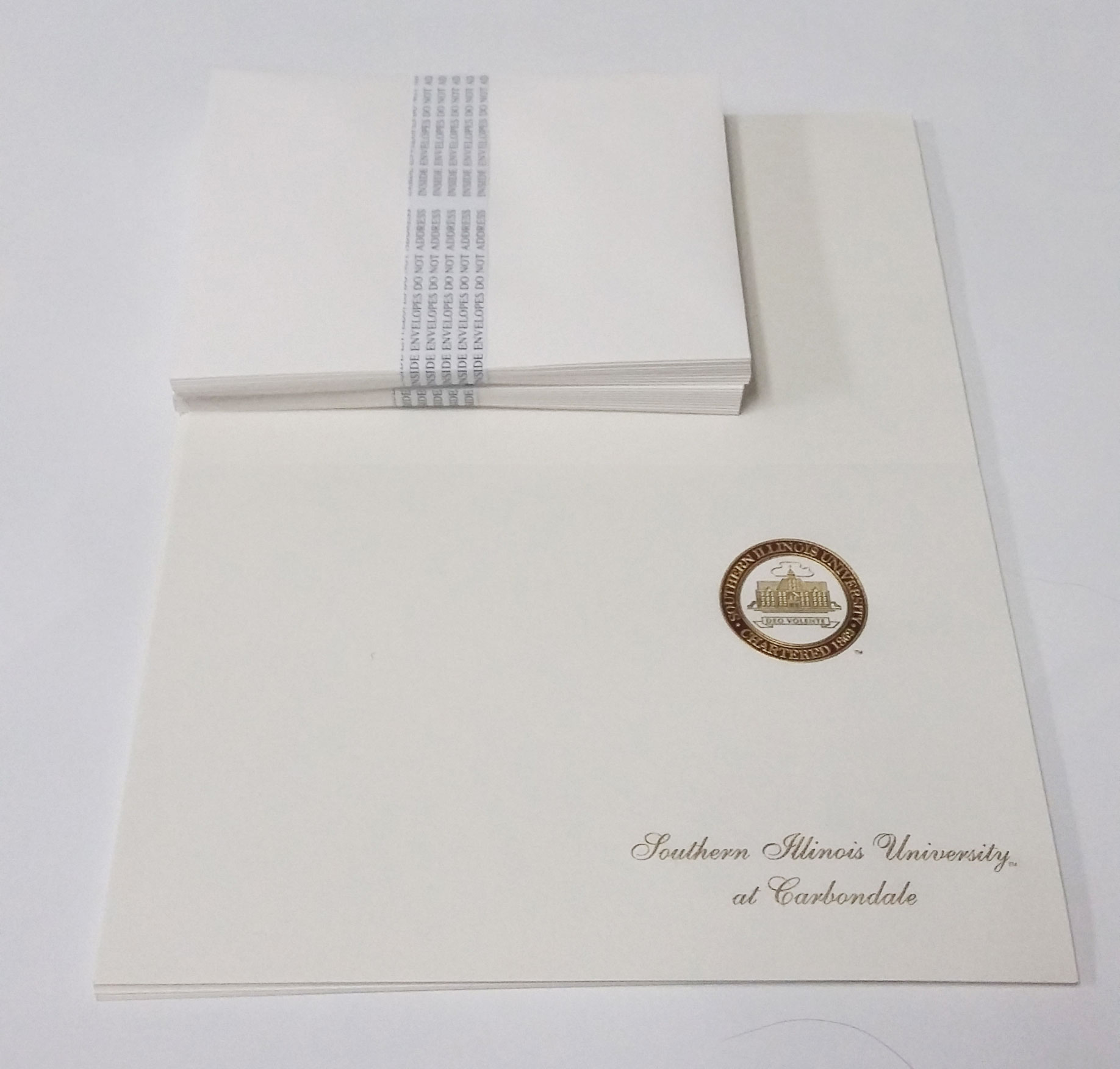 Image for the SIUC 20 BLANK DIY ANNOUNCEMENTS W/ ENVELOPES SET product