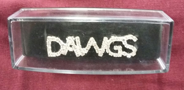 Image for the RHINESTONE DAWGS PIN product