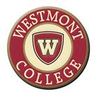 Image for the Spirit Westmont Patch product