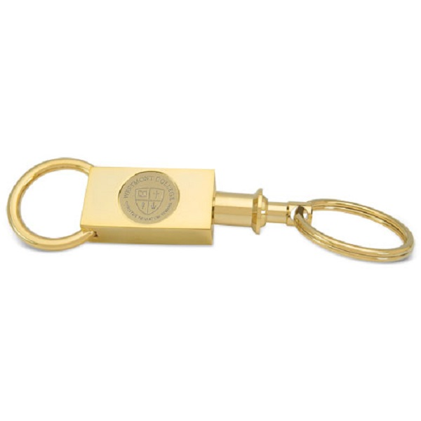 Image for the CSi 11A/G-G Gold Two Section Keyring product