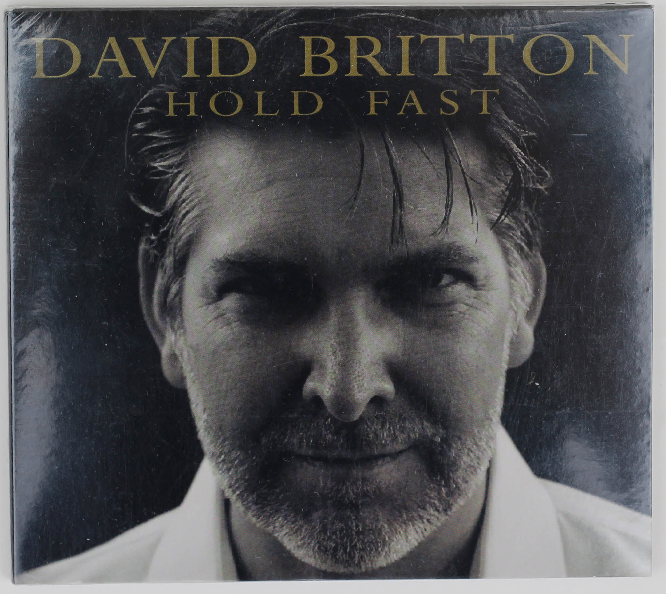 Image for the Hold Fast - David Britton CD product