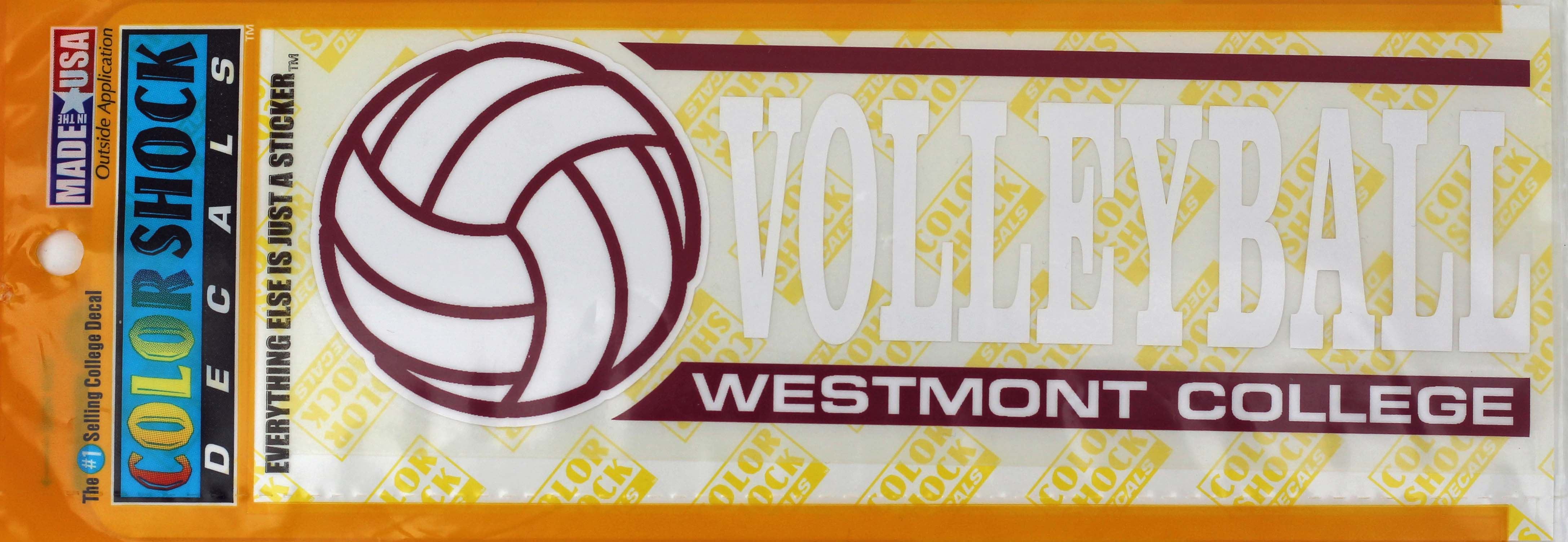 Image for the Color Shock Volleyball Decal product