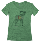 Image for the State of Colorado Ladies Ram Tee product