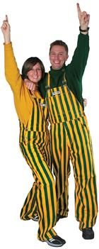 Image for the Green & Gold Game Bibs product